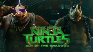 Ninja Turtle (3)